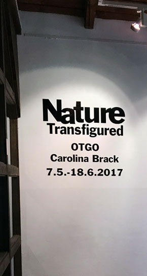 'Nature Transfigured' Exhibition